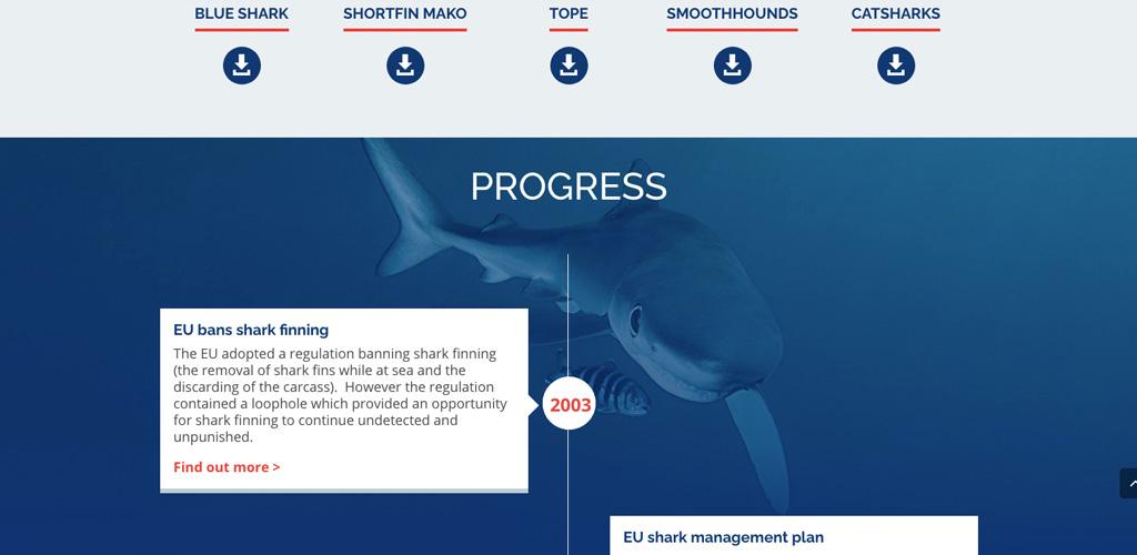 Shark Trust No Limits No Future image