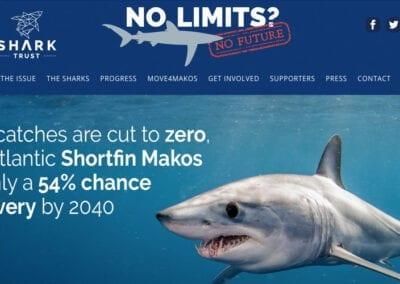 Shark Trust No Limits No Future website design