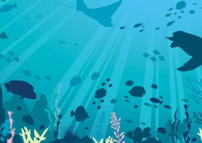 Wall art illustration for the National Marine Aquarium