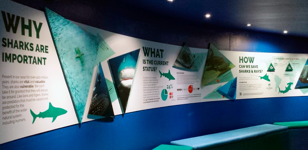 Shark Trust exhibition display graphics at National Marine Aquarium in Plymouth