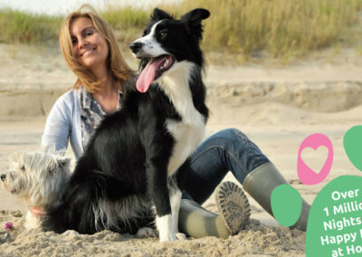 Marketing materials for Trusted Housesitters